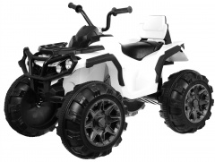 Quad ATV White
